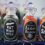 Mini Potion Bottles {with a printable label!}